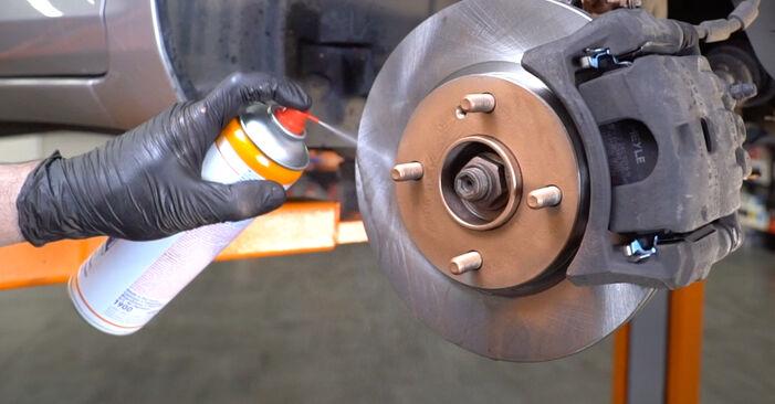 Fiesta Mk6 Hatchback (JA8, JR8) 1.4 LPG 2019 Springs DIY replacement workshop manual