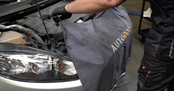 Changing Springs on FORD Fiesta Mk6 Hatchback (JA8, JR8) 1.5 TDCi 2011 by yourself