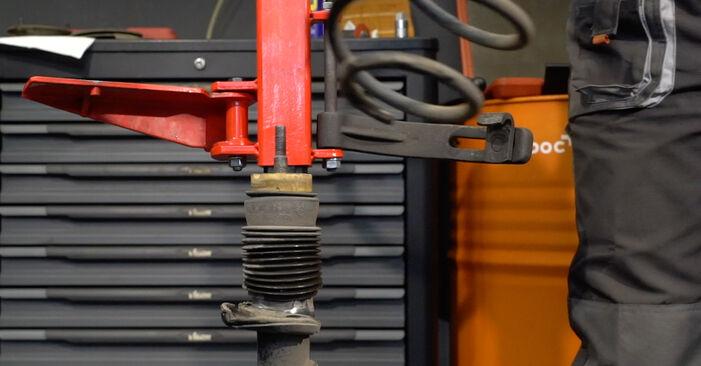 1 Coupe (E82) 125i 3.0 2011 123d 2.0 Federn - Handbuch zum Wechsel und der Reparatur eigenständig