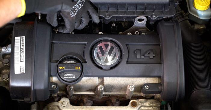 Udskiftning af Tændspole på VW POLO (9N_) 1.2 2004 ved gør-det-selv