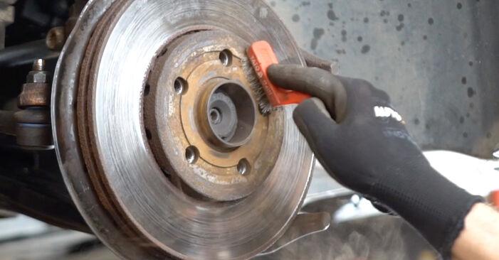 POLO (9N_) 1.9 TDI 2012 Discos de Freno manual de taller de sustitución por su cuenta