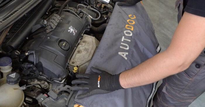 Hvordan man udskifter PEUGEOT 207 (WA_, WC_) 1.4 HDi 2007 Lambdasonde - trin-for-trin manualer og video vejledninger