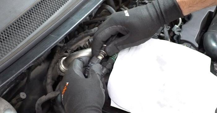 Wie FORD FOCUS 1.6 Ti 2007 Kraftstofffilter ausbauen - Einfach zu verstehende Anleitungen online