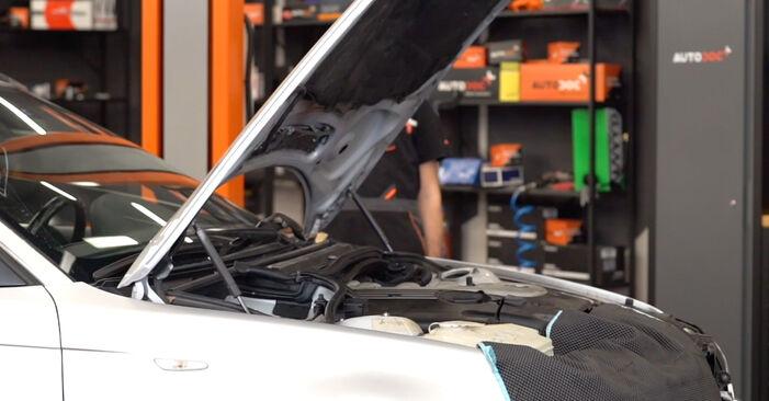Wie BMW 3 SERIES 330d 3.0 2002 Motorlager ausbauen - Einfach zu verstehende Anleitungen online