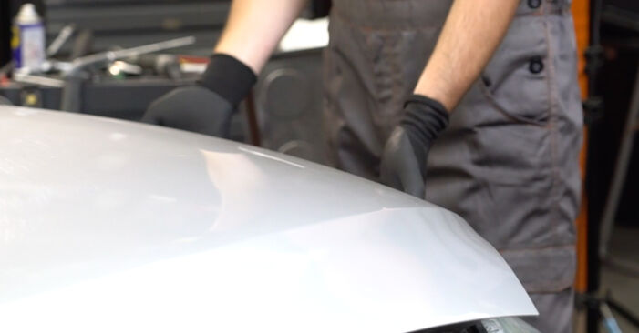 Jak dlouho trvá výměna: Klinovy zebrovany remen na autě Ford Focus mk2 Sedan 2013 - informační PDF návod