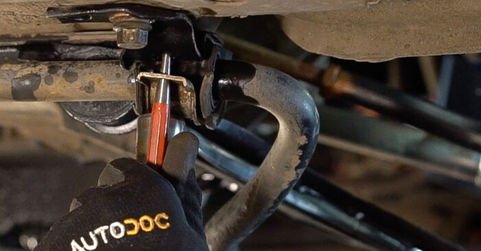 Changing Control Arm on FIAT Doblo Cargo (223_) 1.6 Natural Power 2004 by yourself