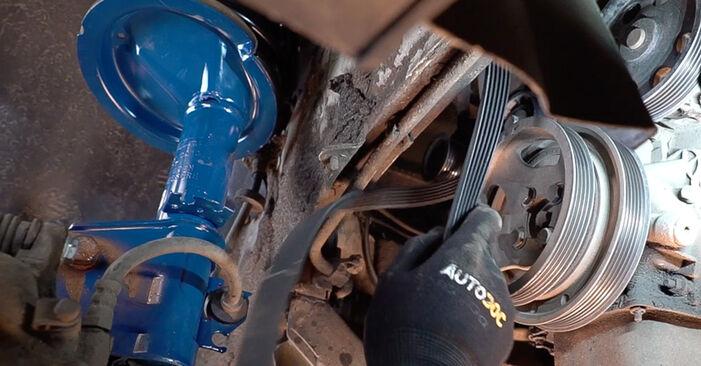 FIAT DOBLO 1.6 16V Poly V-Belt replacement: online guides and video tutorials