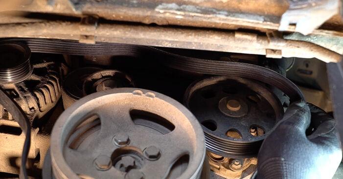 Replacing Poly V-Belt on Fiat Doblo Cargo 2011 1.9 JTD by yourself