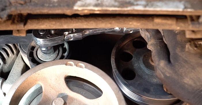 Doblo Cargo (223_) 1.3 JTD 16V 2012 Poly V-Belt DIY replacement workshop manual