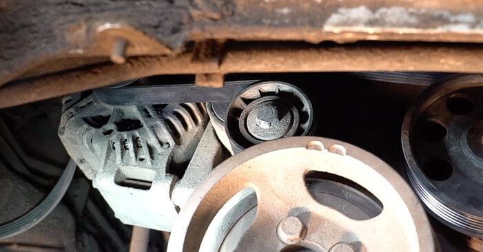 How to change Poly V-Belt on FIAT Doblo Cargo (223_) 2013 - tips and tricks
