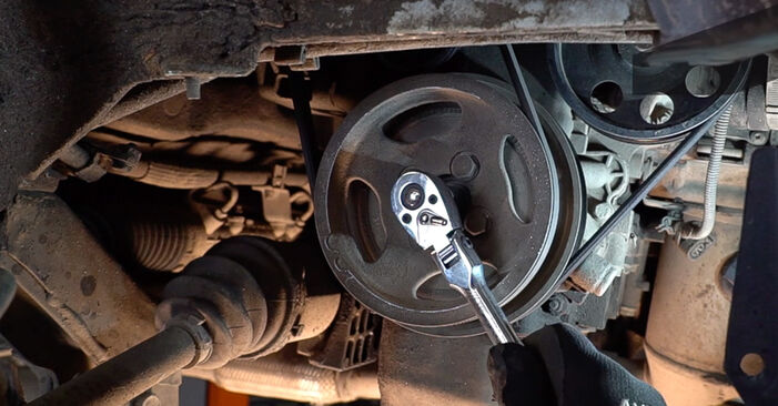 How to replace Poly V-Belt on FIAT Doblo Cargo (223_) 2006: download PDF manuals and video instructions