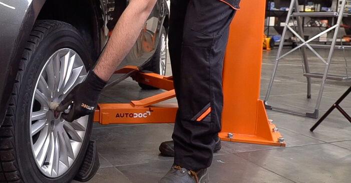 Schritt-für-Schritt-Anleitung zum selbstständigen Wechsel von FIAT BRAVO II (198) 2019 1.4 LPG Domlager