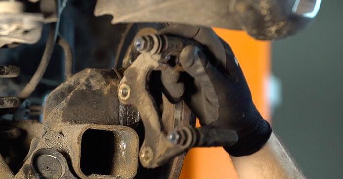 Schritt-für-Schritt-Anleitung zum selbstständigen Wechsel von Renault Scenic 2 2008 2.0 Bremsscheiben
