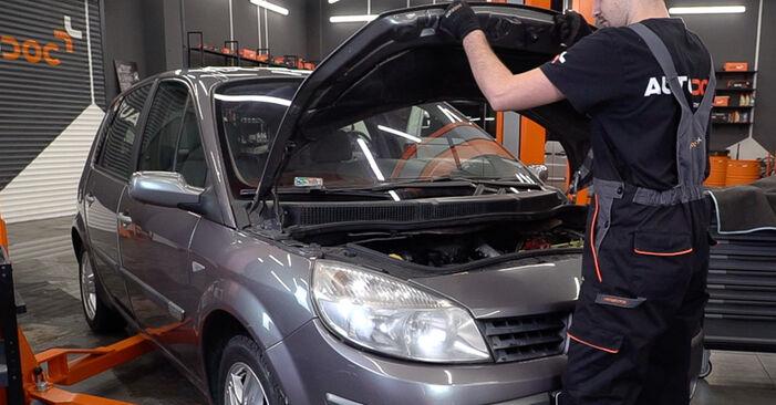 Wie Bremsbeläge Renault Scenic 2 1.9 dCi 2003 tauschen - Kostenlose PDF- und Videoanleitungen