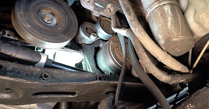 SCÉNIC II (JM0/1_) 2.0 2006 Poly V-Belt DIY replacement workshop manual