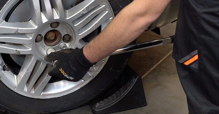 How hard is it to do yourself: Poly V-Belt replacement on Renault Scenic 2 1.9 dCi 2009 - download illustrated guide