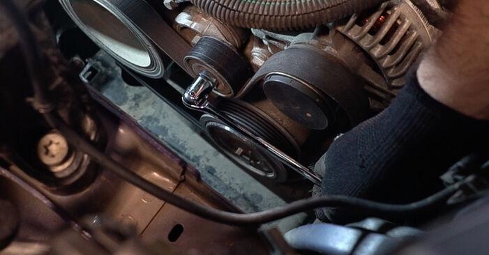 Peugeot 208 1 1.2 2014 Keilrippenriemen austauschen: Unentgeltliche Reparatur-Tutorials