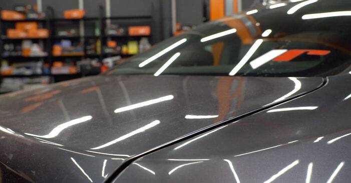Reemplazo de Amortiguador De Maletero en un BMW 3 SERIES 330xd 3.0: guías online y video tutoriales