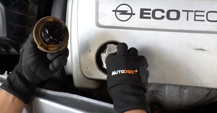 Wie schwer ist es, selbst zu reparieren: Zündkerzen Opel Meriva x03 1.7 DTI (E75) 2009 Tausch - Downloaden Sie sich illustrierte Anleitungen