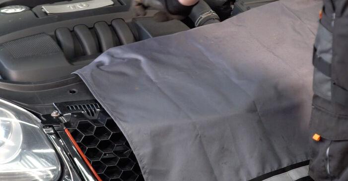 Come sostituire VW Golf V Hatchback (1K1) 1.9 TDI 2004 Cinghia Poly-V - manuali passo passo e video guide