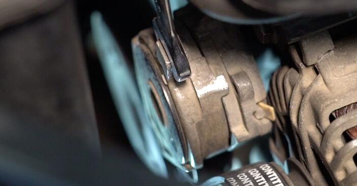 Come sostituire Cinghia Poly-V su VW Golf V Hatchback (1K1) 2008: scarica manuali PDF e istruzioni video