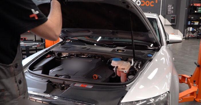 Wymiana Tarcza hamulcowa Audi A6 4f2 2004 - darmowe instrukcje PDF i wideo