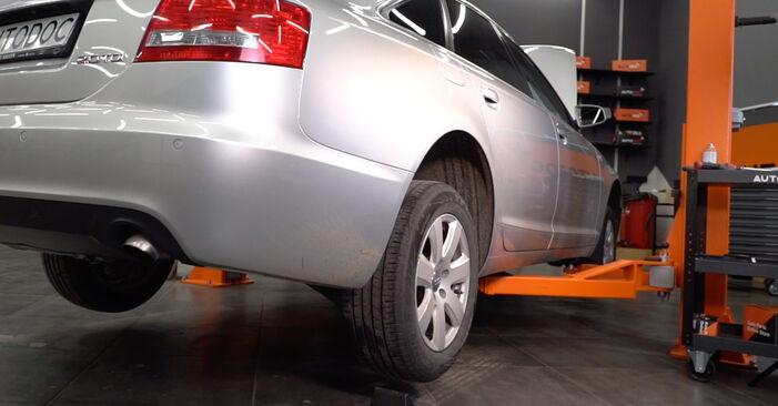 Audi A6 4f2 2.0 TDI 2006 Rato guolis keitimas: nemokamos remonto instrukcijos