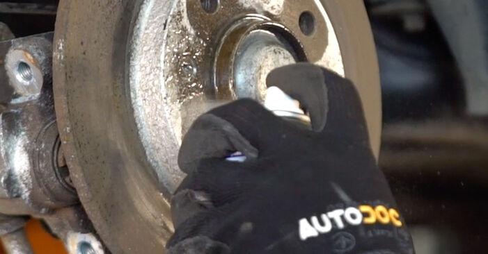 Schritt-für-Schritt-Anleitung zum selbstständigen Wechsel von Peugeot 206 cc 2d 2011 1.6 16V Radlager