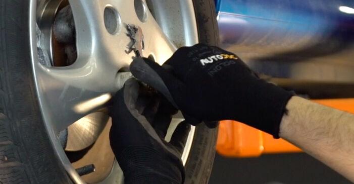 Wie PEUGEOT 206 1.6 16V 2002 Bremsbeläge ausbauen - Einfach zu verstehende Anleitungen online