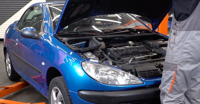 How to change Poly V-Belt on Peugeot 206 cc 2d 1998 - free PDF and video manuals