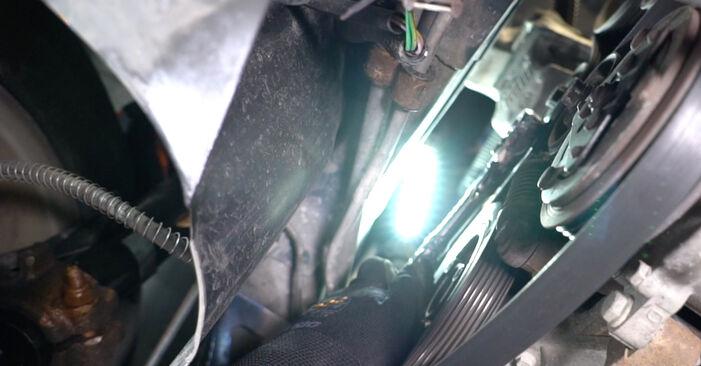 Peugeot 206 cc 2d 2.0 S16 2000 Multiriem remplaceren: kosteloze garagehandleidingen