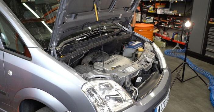 Wie man Keilrippenriemen beim Opel Meriva x03 2003 wechselt - Gratis PDF- und Video-Tutorials