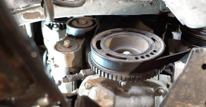 Wie schwer ist es, selbst zu reparieren: Keilrippenriemen Opel Meriva x03 1.7 DTI (E75) 2009 Tausch - Downloaden Sie sich illustrierte Anleitungen
