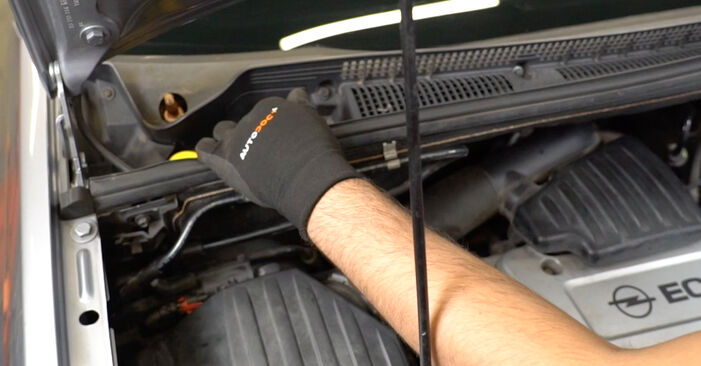 Replacing Pollen Filter on Opel Meriva x03 2005 1.7 CDTI (E75) by yourself