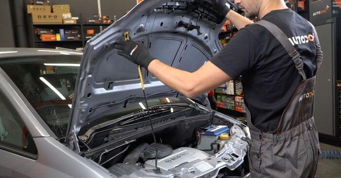 Wie Bremsbeläge Opel Meriva x03 1.7 CDTI (E75) 2003 tauschen - Kostenlose PDF- und Videoanleitungen