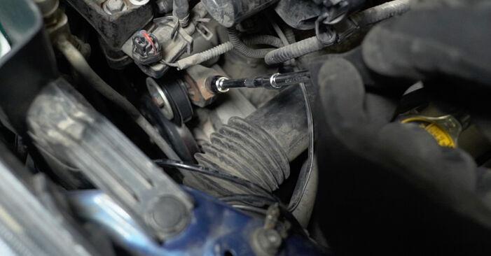 Steg-för-steg-rekommendationer för att byta Toyota Prius 2 2009 1.5 (NHW2_) Multirem på egen hand