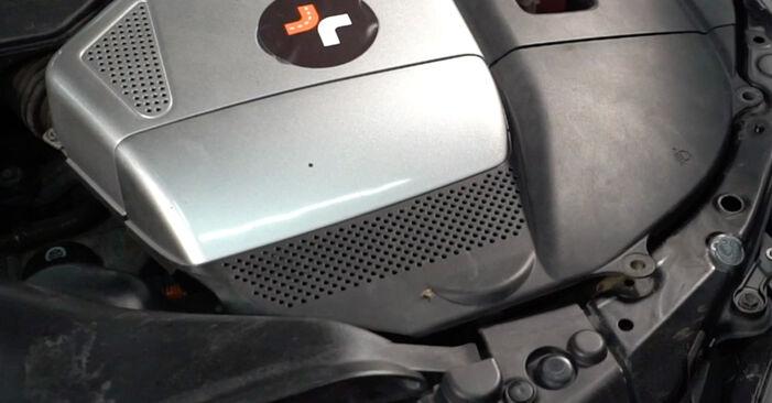 Bremsbeläge Lexus RX XU30 3.3 400h 2005 wechseln: Kostenlose Reparaturhandbücher