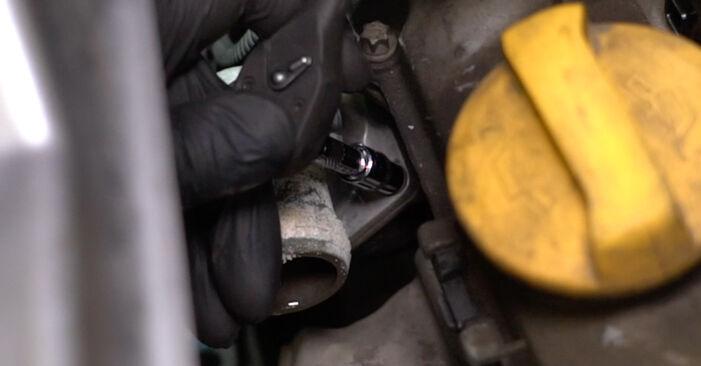 La sostituzione di Termostato su Opel Meriva x03 2003 non sarà un problema se segui questa guida illustrata passo-passo