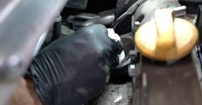 Consigli passo-passo per la sostituzione del fai da te Opel Meriva x03 2008 1.3 CDTI (E75) Termostato