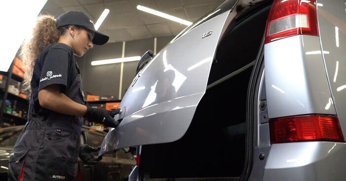 Wie Heckklappendämpfer Opel Meriva x03 1.7 CDTI (E75) 2003 tauschen - Kostenlose PDF- und Videoanleitungen