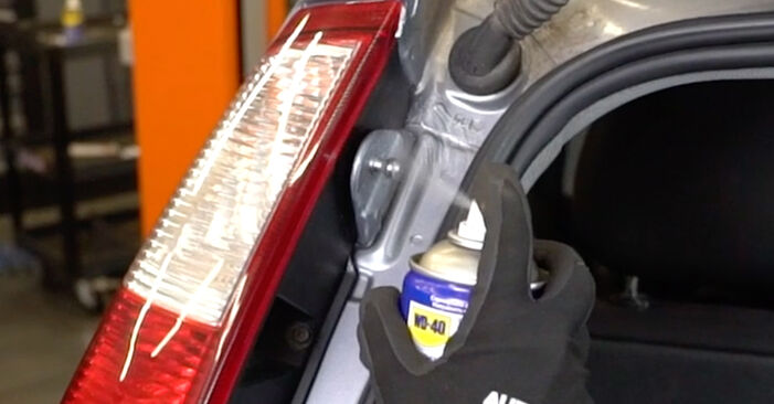 Austauschen Anleitung Heckklappendämpfer am Opel Meriva x03 2005 1.7 CDTI (E75) selbst