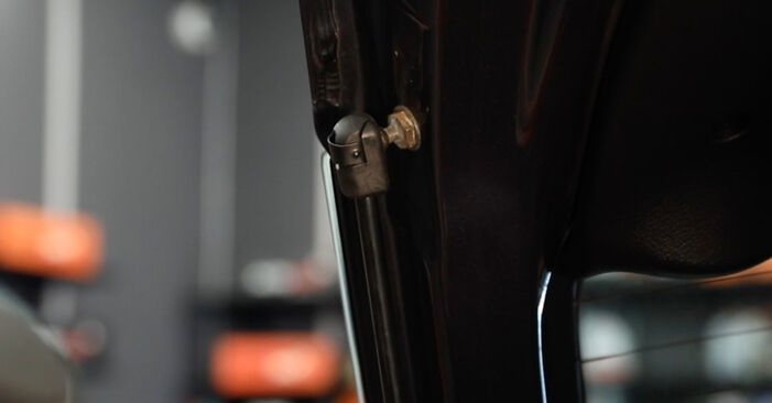 A substituição do Amortecedor Da Mala no FORD Fiesta Mk5 Hatchback (JH1, JD1, JH3, JD3) 1.3 2005 não é mais um problema com o nosso tutorial passo a passo.