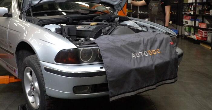 BMW E39 530d 3.0 1997 Roulement De Roues remplacement : manuels d'atelier gratuits
