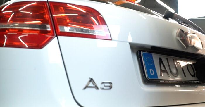 Heckklappendämpfer Audi A3 8P 2.0 TDI 2006 wechseln: Kostenlose Reparaturhandbücher