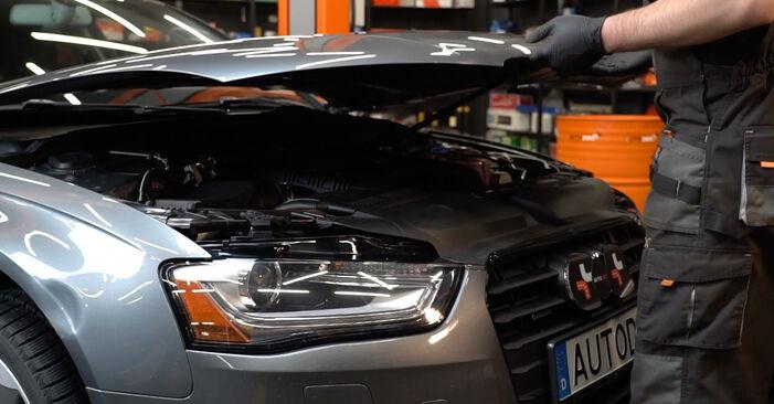 Ako vymeniť Klinový rebrovaný remen na Audi A4 B8 Sedan 2007 – bezplatné PDF a video návody.