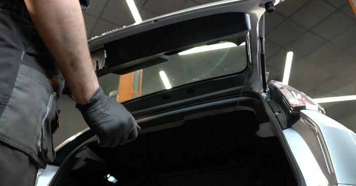 Schritt-für-Schritt-Anleitung zum selbstständigen Wechsel von Fiat Punto 199 2021 1.4 T-Jet Heckklappendämpfer