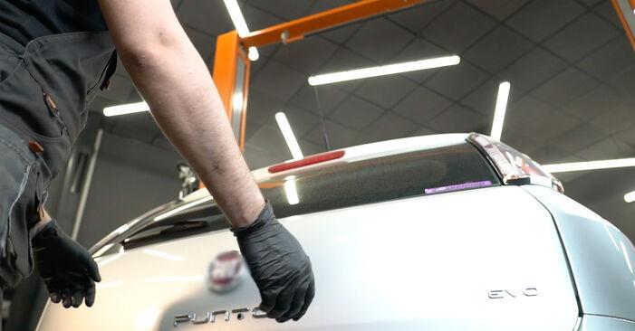 Sostituire Pistoni Portellone su FIAT GRANDE PUNTO (199) 1.2 2008 non è più un problema con il nostro tutorial passo-passo