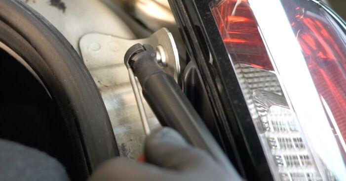 Fiat Punto 199 1.4 2010 Pistoni Portellone sostituzione: manuali dell'autofficina