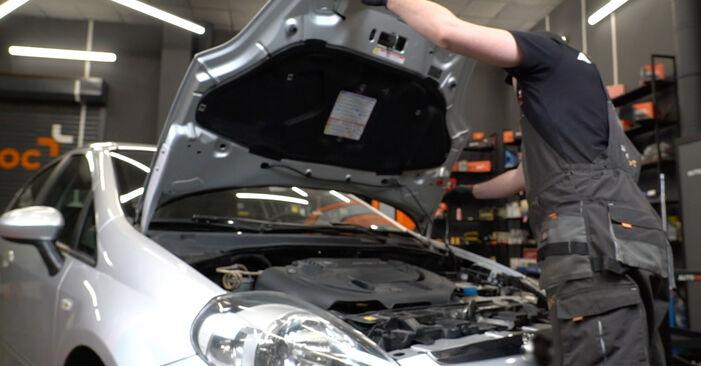 Как се сменя Многоклинов(пистов) ремък на Fiat Punto 199 2005 - безплатни PDF и видео уроци