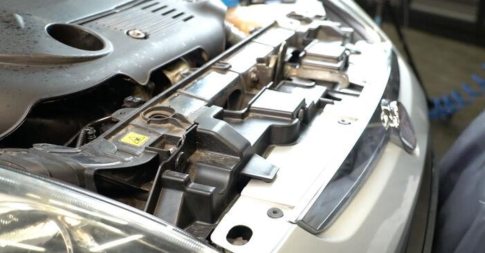 Смяна на Многоклинов(пистов) ремък на Fiat Punto 199 2015 1.3 D Multijet самостоятелно